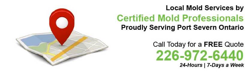 360 Mold Services - Certified Mold Professionals in Port Severn, Ontario Banner
