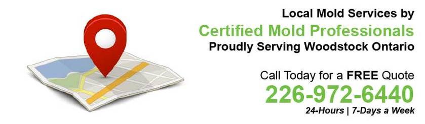 360 Mold Services - Certified Mold Professionals in Woodstock, Ontario Banner